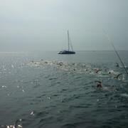 Плавание на Открытой воде - от новичка до профи группа в Моем Мире.