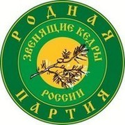 Работа Родной Партии в Костромском региональном отделении группа в Моем Мире.