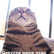 Сергей * on My World.
